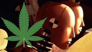 Can Marijuana Save Your Life in an Accident?