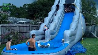 Funny Dogs on Water Slides Compilation