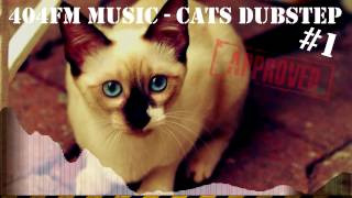 DUBSTEP CAT 2017 Дабстеп Кот