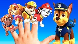 PAW PATROL Kids Song: BEST Nursery Rhymes For Children