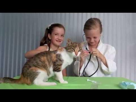 ИГРА ДОКТОР Играем в доктора Лечим нашу кошечку Делаем укол . укол кошке