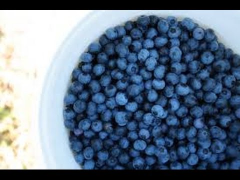 Natural ways to remove pesticides from Blueberries