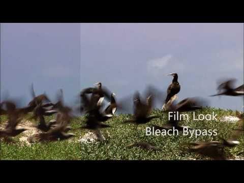 Blaine's Film Look Effects