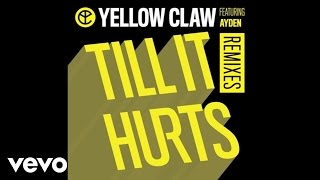 Yellow Claw - Till It Hurts LNY TNZ Remix  Audio ft Ayden