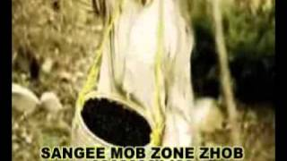 Javed Amir khel .Pashto New Song .2012.Zhob Video.flv