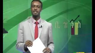Ethiopian Business day news dec 17, 2015