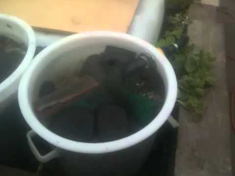 Diy koi pond bio filter youtube for Diy pond bio filter
