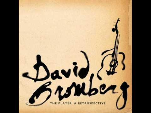 David Bromberg - Sleep Late In The Morning