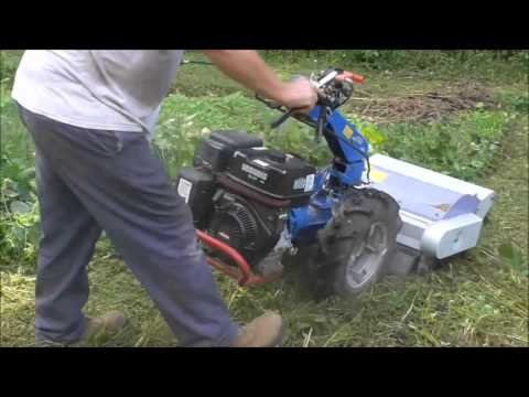 BCS walk-behind tractor (flail mower) pulverizing weeds/brush