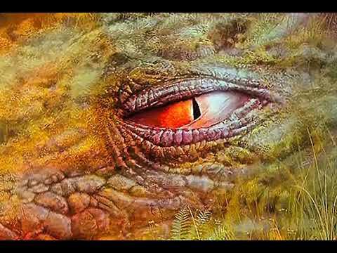 Cocodrilos en el río Tárcoles - Costa Rica