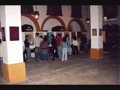 La Anunciata Ikastetxea en II Encuentro Alumnos Investigadores, Cádiz