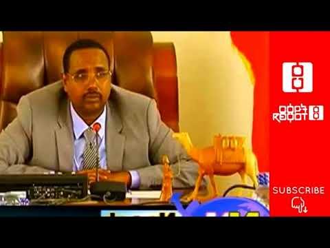 Ethiopia: Discussion About Ethiopia's Somali Region Conflict