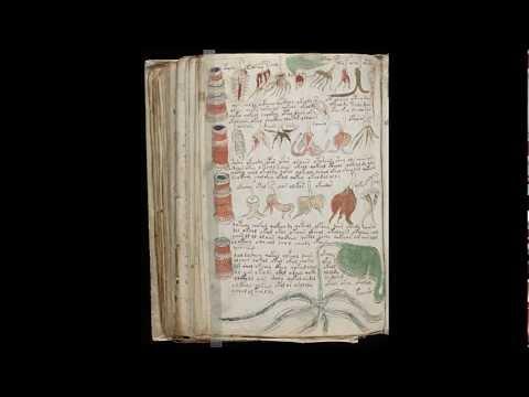 Voynich Manuscript Facsimile The Entire Voynich Manuscript