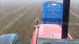 Garlic planting MF4270