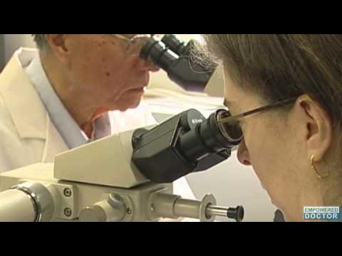 Cancers Could Be Treated with Red Wine, Grape Skin Compound