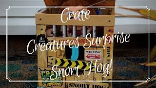 We unbox Snorthog, a Crate Creatures Surprise from MGA Entertainment