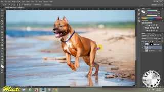 Photoshop İle 3D Pop Out Efekti