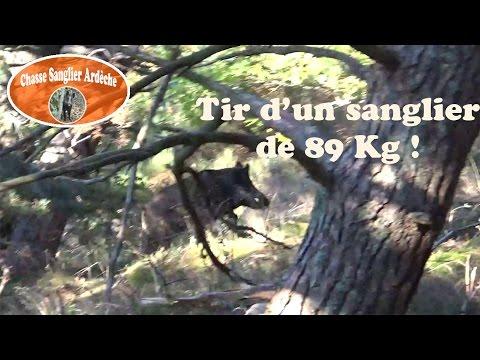 Chasse Du Sanglier En Ardèche 2015-2016 - 03 - Tir D'un Gros Sanglier (89 Kg)