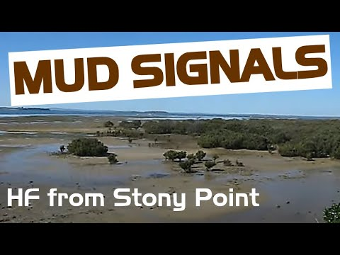 Mud Signals: QRP from Stony Point's mangroves