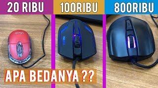 Mouse 20 Ribu vs 100 Ribu vs 800 Ribu | Cuma ini Bedanya Ternyata ya...