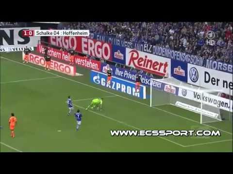 Schalke 04 - Hoffenheim 3-1 Alle Tore & Highlights