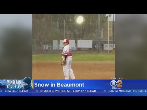 Snow Falls On Beaumont Youth Baseball Game