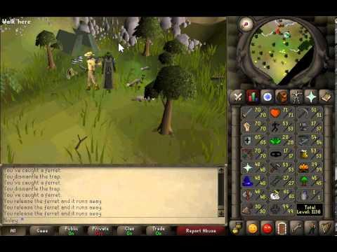 Noley | 2007 Runescape | 1-99 Hunter Guide
