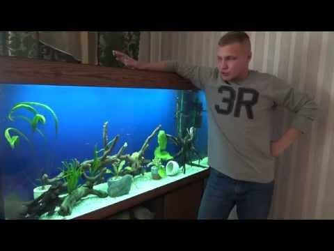 Как приготовить аквариум - видео