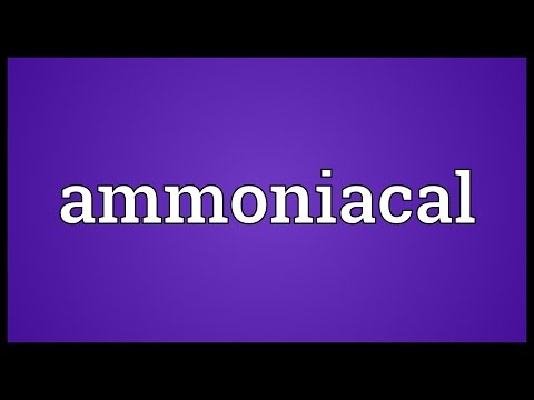 Header of ammoniacal