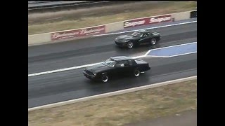 87 Grand National vs Viper