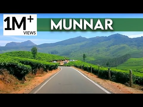 munnar the most beautiful place in india  (kerala tourism)