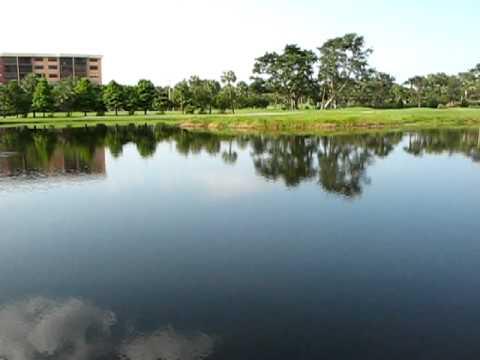 The Lakes At Deer Creek