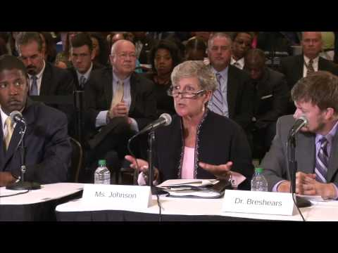 Senate Veterans' Affairs Committee Field Hearing in Atlanta: Addressing Mental Health Care (Panel 2)