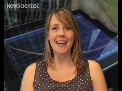 CSI: pig, iPads go live and hydrogen cars