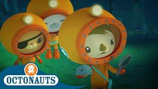 Octonauts - Deep-Water Dive | Cartoons for Kids | Underwater Sea Education
