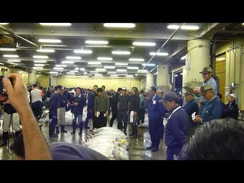 Tsukiji Wholesale Fish Market in Tokyo - Tuna Auctions