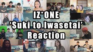 """IZ*ONE (아이즈원) - (Suki to Iwasetai)' MV """"Reaction Mashup"""""""
