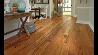 Expert Advice: Bellawood Hardwood Flooring | Lumber Liquidators