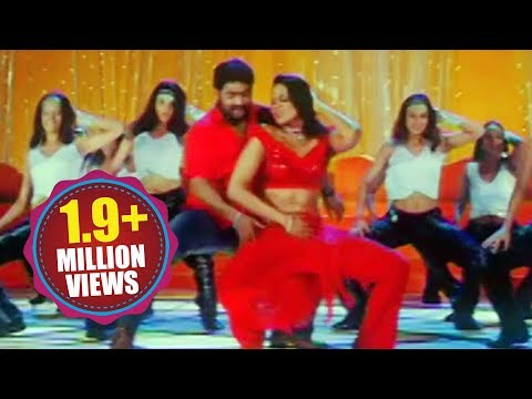 Narasimhudu Songs - Singu Singu - Jr Ntr Sameera Reddy video
