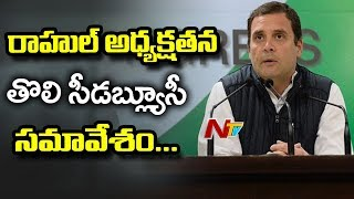 Rahul Gandhi To Hold Meet With CWC Members | Rahul Gandhi Strategies To Defeat BJP in 2019 Elections
