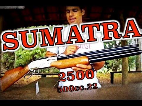 Sumatra 2500 500cc .22