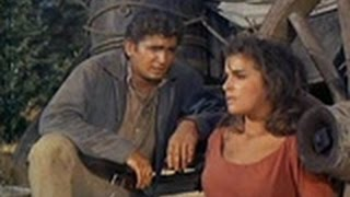 Bonanza Tv Show Season 2 Episode 17 S02E17 The Spitfire