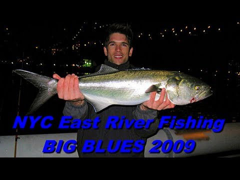 New York City Urban Fishing - 2009