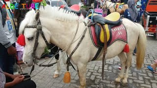 Deba Naik Kuda  Lagu Anak Populer Naik Delman  Nai