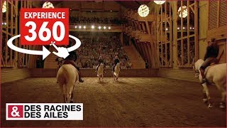 Vido 360 LAcadmie questre de Versailles comme si v