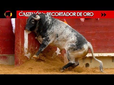 CASTELLÓN - RECORTADOR DE ORO Y DAMAS DEL RECORTE 04/03/2018