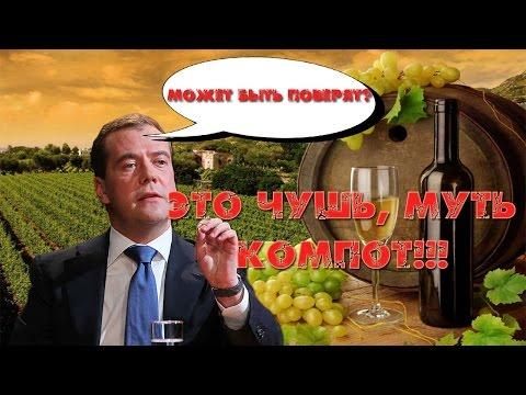 В Питере троллят Медведева - Чушь, муть и компот!