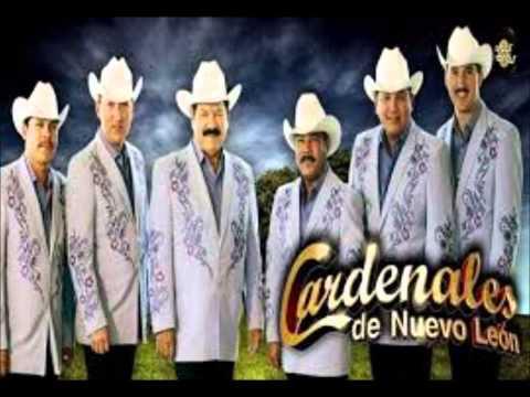 Cardenales de Nuevo León - Deténgase Señora