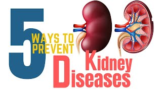 5 Ways To Prevent Kidney Diseases  ║Prevent Kidney Failure ║