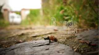 Bengale Video 2012 HD